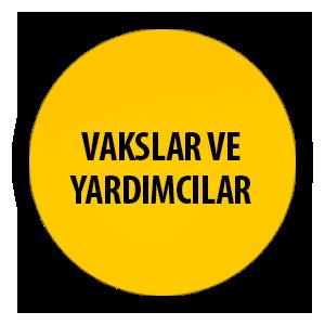 VAKSLARVEYARDIMCILAR