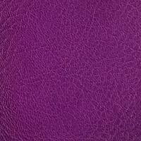 5134 / Purple